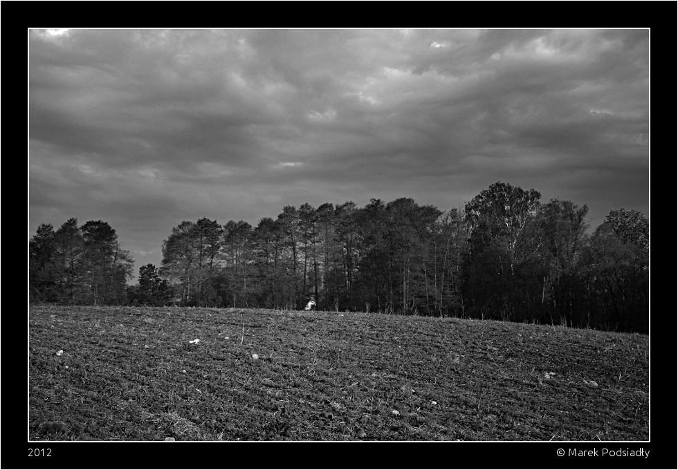 Krajobraz z drzewami i chmurami